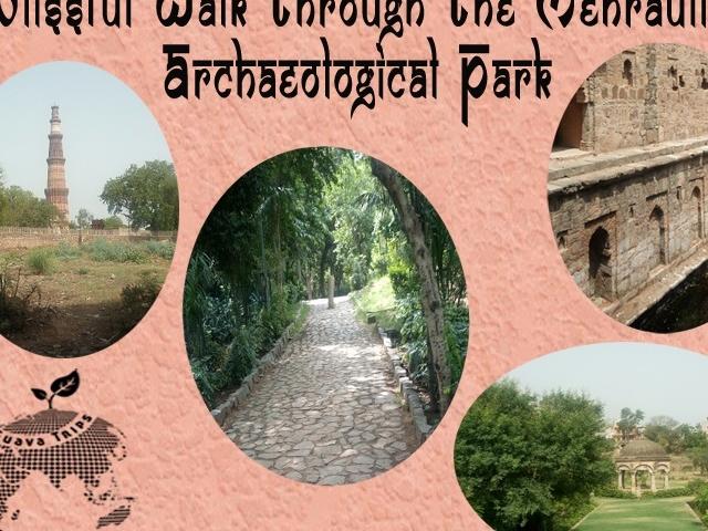 Blissful Walk Through the Mehrauli Archaeological Park Photos