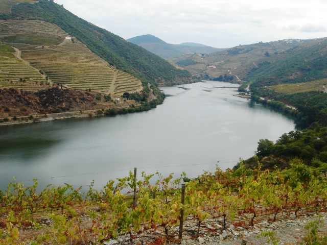 Douro Tour Photos