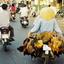 Daily Life In Saigon