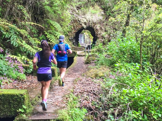 Folhadal Hidden Treasures Running Tour (Moderate) Photos