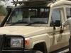 Wild Wild Serengeti Safari