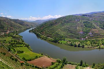 Porto Wine Tour Full Day Photos