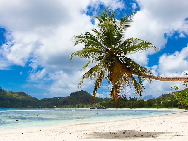 Relaaaaxxx on the Lovely Beaches of Seychelles Photos