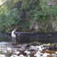 River Tees Fly Fishing