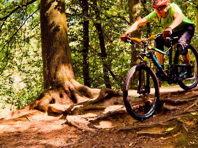 All Mountain Biking Tours in Prague Photos