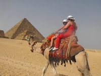 Sharm Wonders