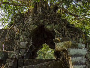 Day Trip to Beng Mealea Temple and Kampong Khleang Photos