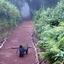 Kilimanjaro Day Hike 4