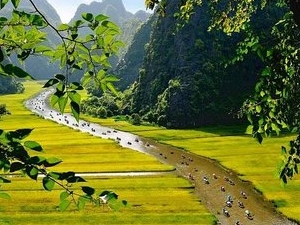 Hoa Lu-Tam Coc One Day Tour Photos