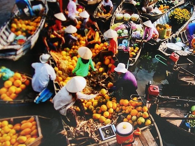 Mekong Delta Tour Photos