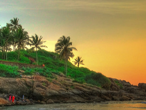 Ever Green Kerala in Budget Price Fotos