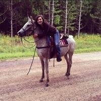 Wilderness Pursuit Horseback Adventures