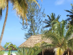 Low Budget Zanzibar Couple Tour Photos