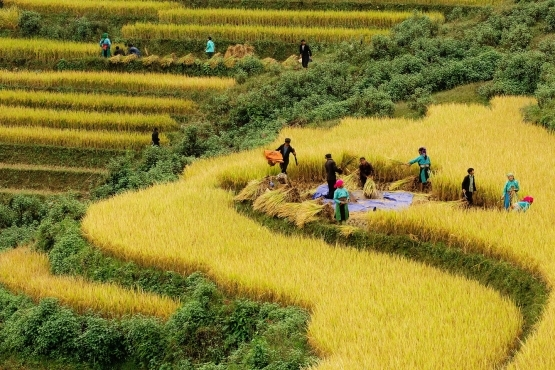 Sapa Valley View Trekking Tour Photos