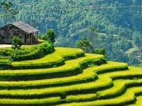 Ha Giang Vietpictravel