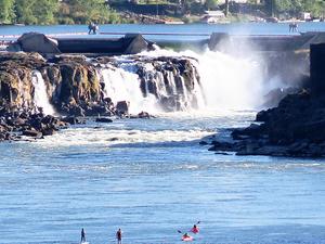Willamette Falls Tour Fotos