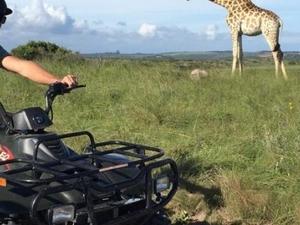 Safari Package
