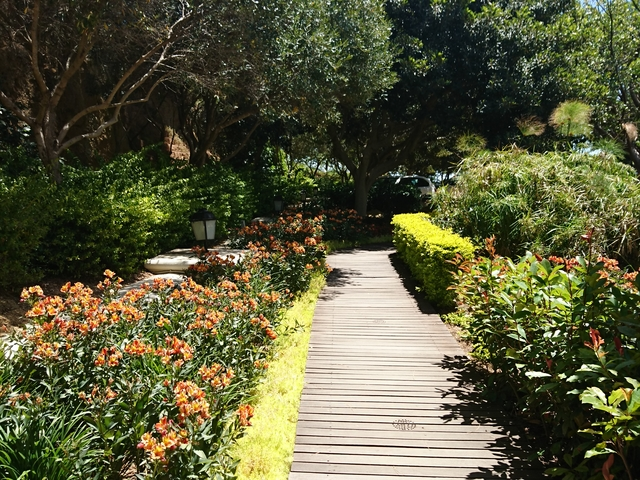 Scenic Garden Route Circular Photos
