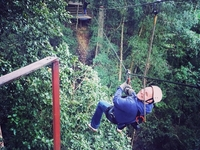 Zip-sliding At Tsitsikamma Forest