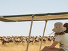 5 Day camping Safari Tarangire, Serengeti, Ngorongoro