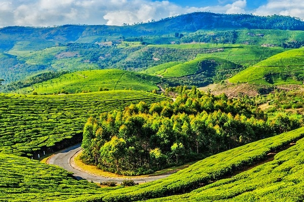 AMAZING SOUTH INDIA FROM VOYAGO HOLIDAYS Photos