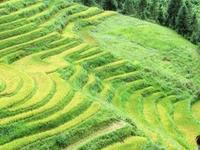 7 Day North Vietnam