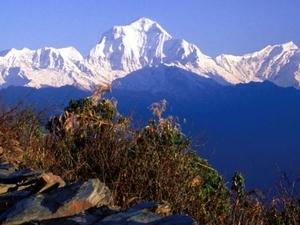 Annapurna Poon Hill Trekking Photos