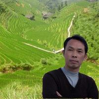 Daniel Ye