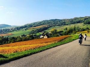 Bike and Wine Week End in Burgundy