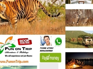 Wildlife South India Tours
