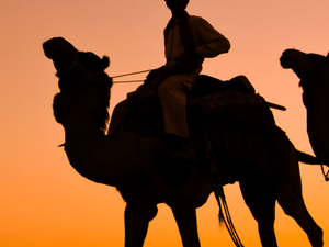 Classical Rajasthan Photos