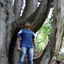 Logesh Rajendran