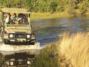 Explore Okavango Delta Fotos