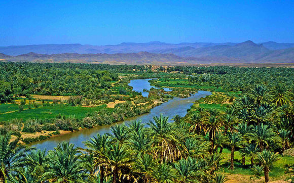 Desert Tour in Morocco from Marrakech Photos