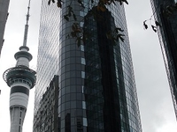 Auckland Sky Tower From Queens St