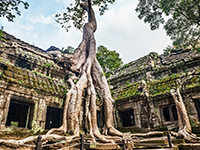 3 Days Tour In Siem Reap Angkor Wat