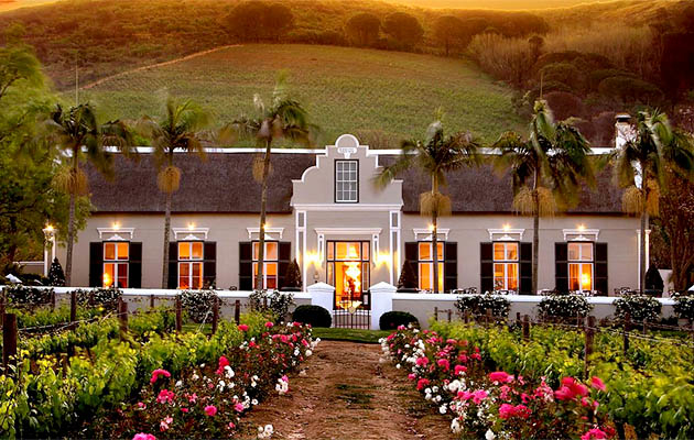 Christmas in the Winelands Photos