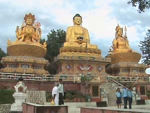 Pilgrimage Tours of Buddha Photos