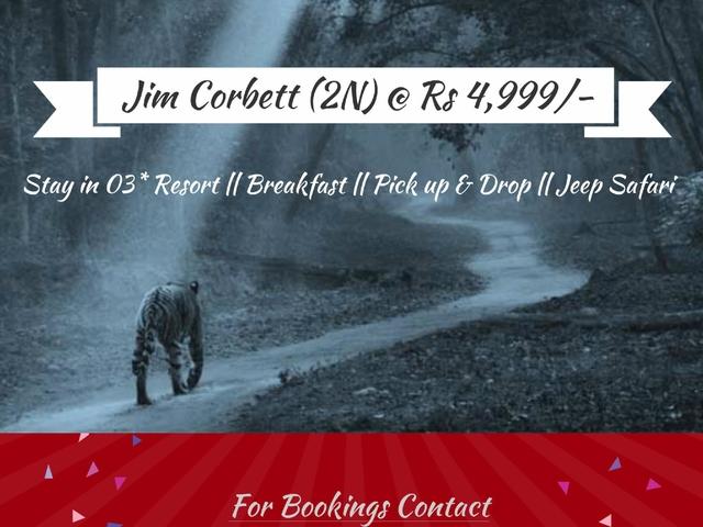 Jim Corbett Best Deals Photos
