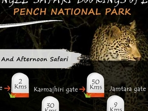 Jungle Safari Bookings Pench National Park