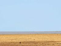 Arusha NP, Manyara, Serengeti & Ngorongoro