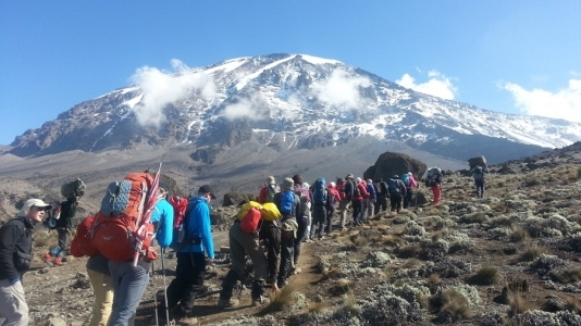 Climb Mount Kilimanjaro - Lemosho Route Photos
