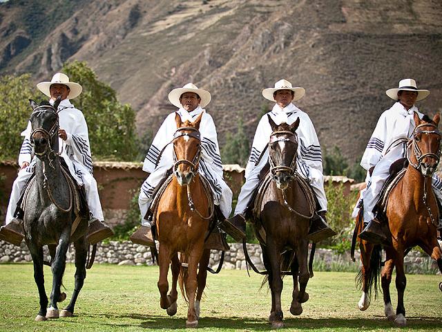 Peruvian Paso Horse Experience Photos