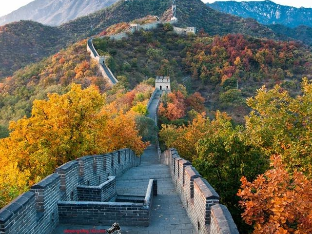 Beijing Airport Layover Great Wall Private Tour Photos