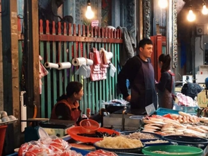 Beijing Day Tour : Morning Market, Hutong, Zoo, Summer Palace Fotos