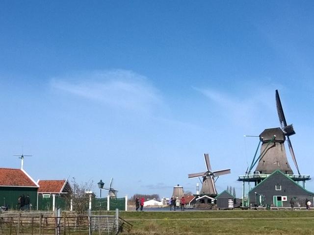 Small-Group Guided Zaanse Schans Excursion Photos