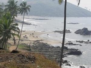 Go Goa Beach Holidays Packages. Photos