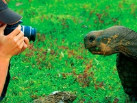 Andes and Galapagos Package
