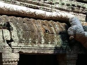 Visit Cambodia Fotos