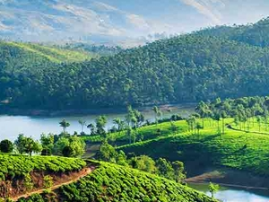 Kerala 3 Star Package with Abad Hotels Photos